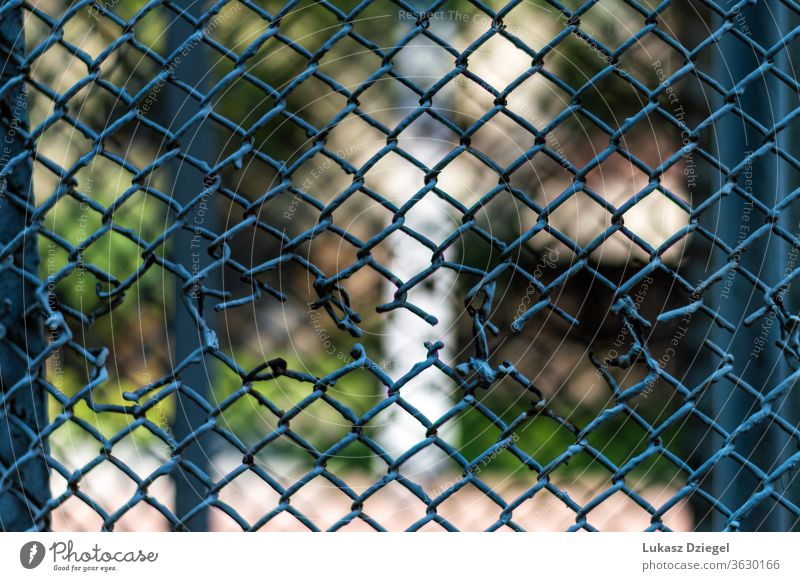 Fragment of a mesh fence with a hole outdoor danger wire mesh outbreak crime escape chain link old forbidden crack wired breakout netting safety thieves element
