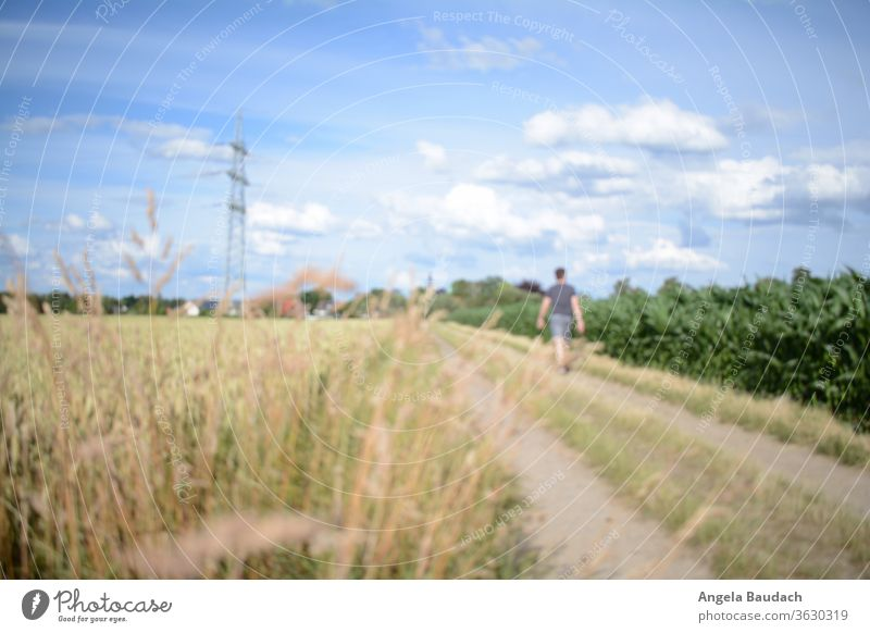 Man walks on field path stroll off the beaten track To go for a walk strollers Promenade Walk in the nature Blue sky Clouds Electricity pylon stream