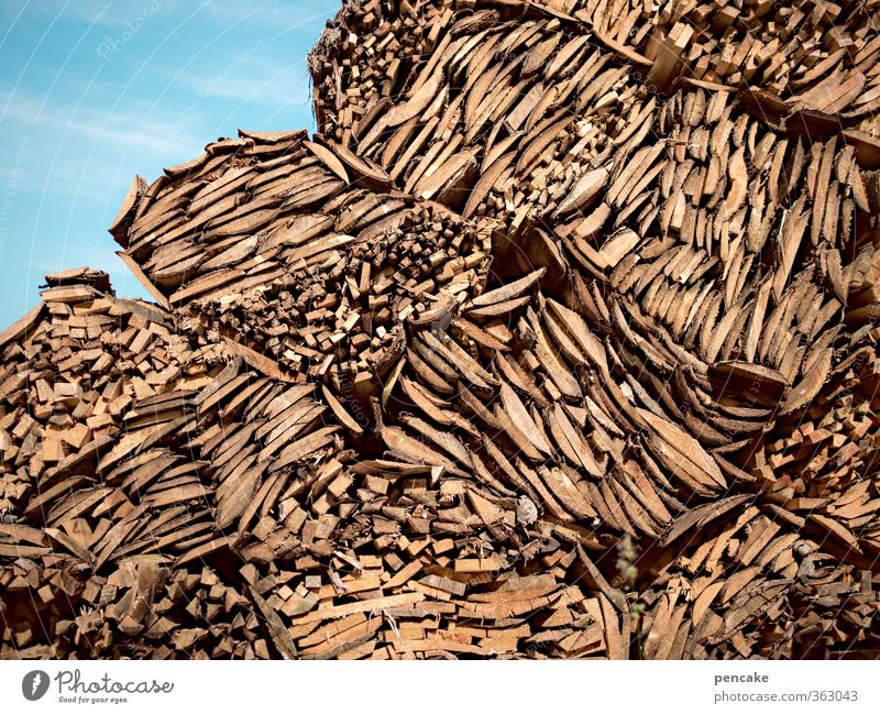 building material | good wood | AST6 Inn Valley Nature Elements Forest Alps Wood Esthetic Fragrance Original Clean Tree bark Remainder Paper manufacture Build