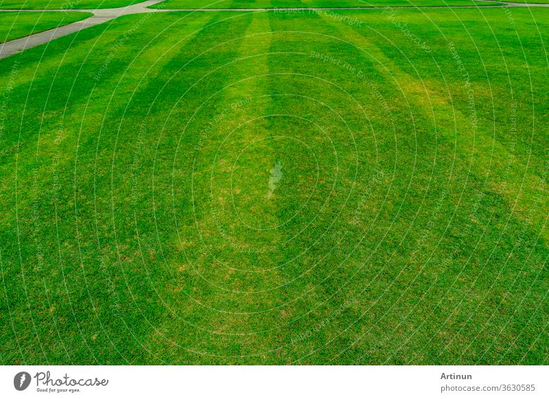 Green grass field with line pattern texture background and walkway abstract area backdrop ball beautiful clean closeup color competition design empty