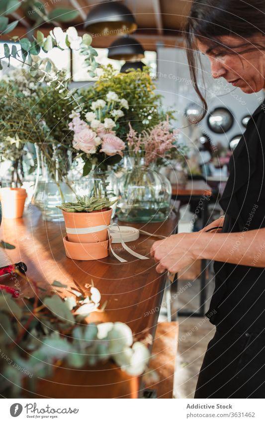 Florist arranging ribbon on pot with succulent plant florist shop arrange work woman floristry hand store retail female occupation job service owner fresh green