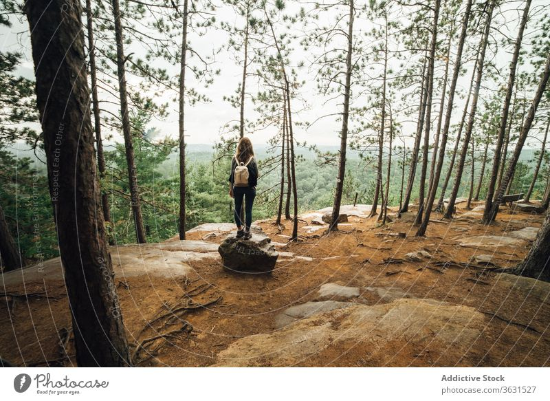 Female hiker walking on mountain slope woman forest nature travel backpacker route algonquin provincial park cloudy overcast landscape female journey tourism