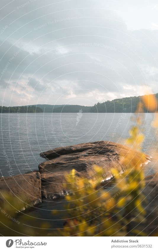 Stony shore near calm lake in cloudy day stone nature travel freedom harmony landscape enjoy water rock journey tourism adventure algonquin provincial park