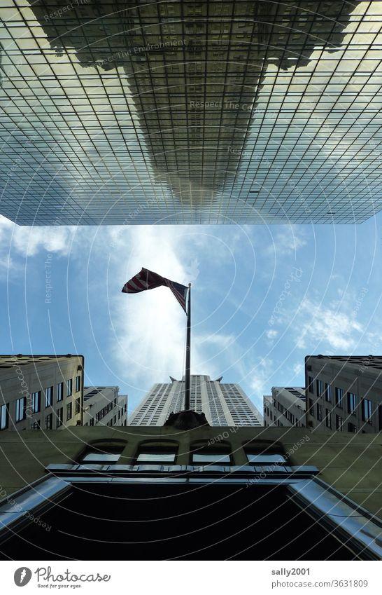 Frog's-eye view in New York... Empire State building Worm's-eye view reflection New York City High-rise USA Americas Landmark Manhattan built Skyward