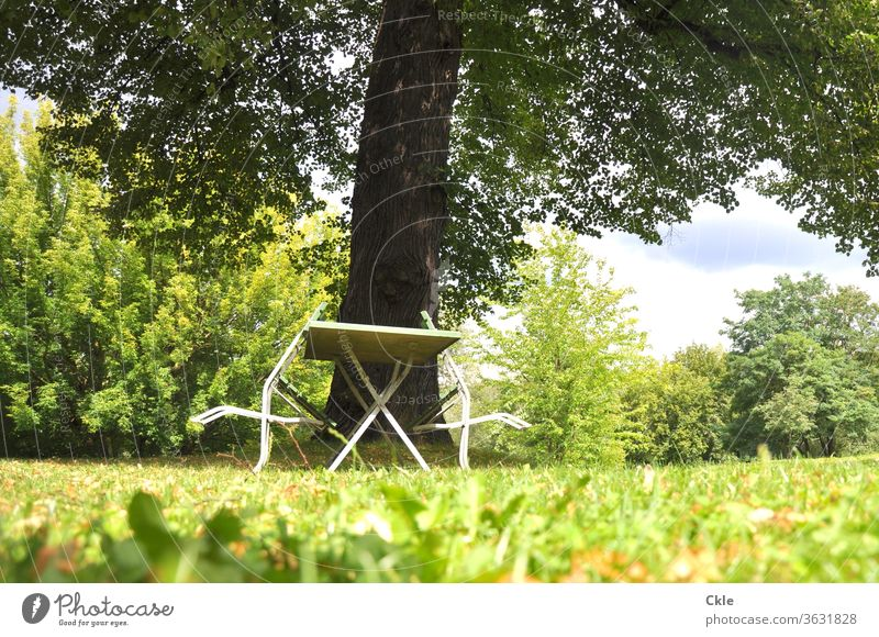 Chairs relax at the garden table Garden Park Outdoor furniture Table chairs tree Lawn huts Treetop Deserted Exterior shot Colour photo Day Garden chair Meadow