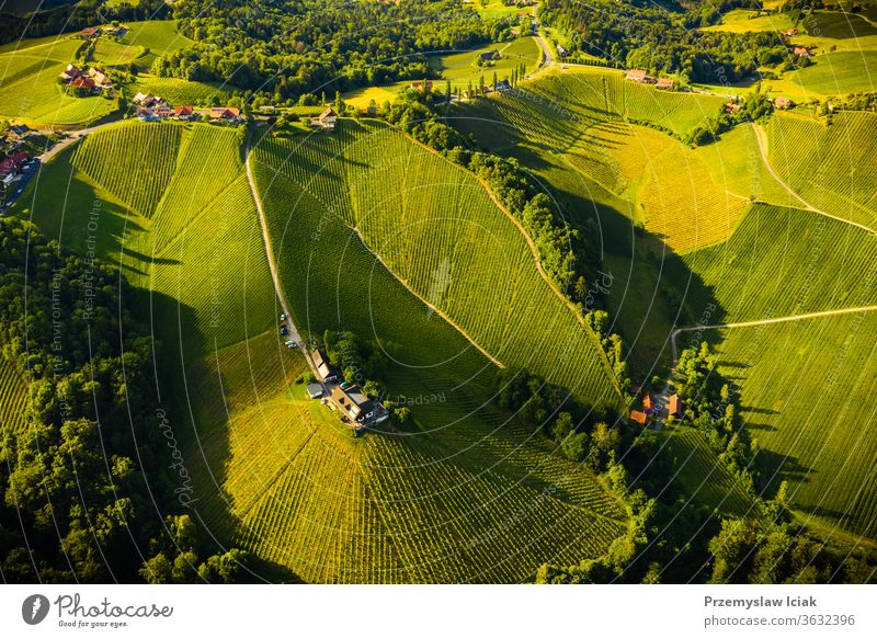 Aerial view of green hills and vineyards with mountains in background. Austria vineyards landscape. summer wine viticulture nature banner sun spring panorama
