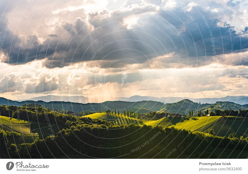 Beautiful landscape of Austrian vineyards in south Styria. Famous Tuscany like place to visit. summer idyllic wine travel austria panoramic nature sun winery