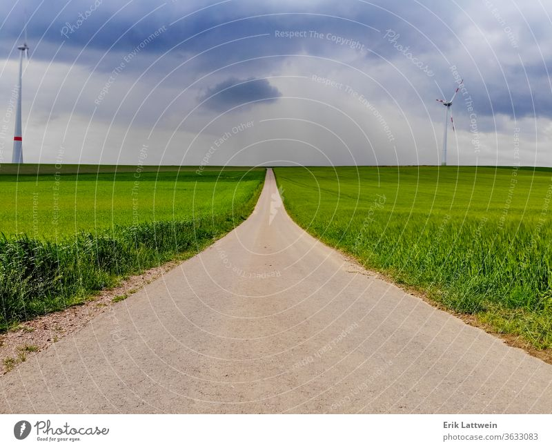 Endless road through a green landscape agriculture countryside field grassland aerial flight fly drone footage meadow nature season summer yellow environment