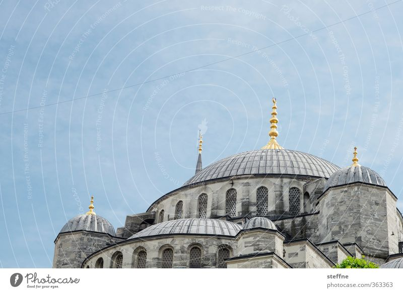 Religion and faith Elegant Esthetic Landmark Domed roof Turkey Istanbul Near and Middle East Islam Mosque Splendid Blue Mosque Dignity