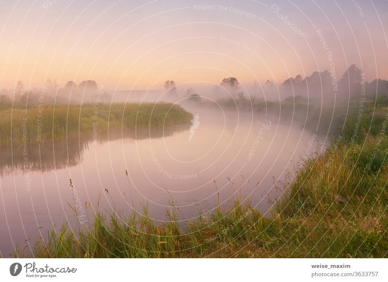 Morning fog on river. Beautiful summer sunrise landscape morning nature tree background water mist outdoor reflection dawn foggy cloud green sunlight colorful
