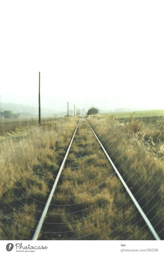 Grass Railroad Railroad tracks Plain