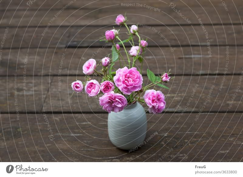 little rose Bouquet flowers Vase with flowers Flowers and buds Rose blossom Damask Rose old rose Pink Wood planks weathered wood Spring Close-up