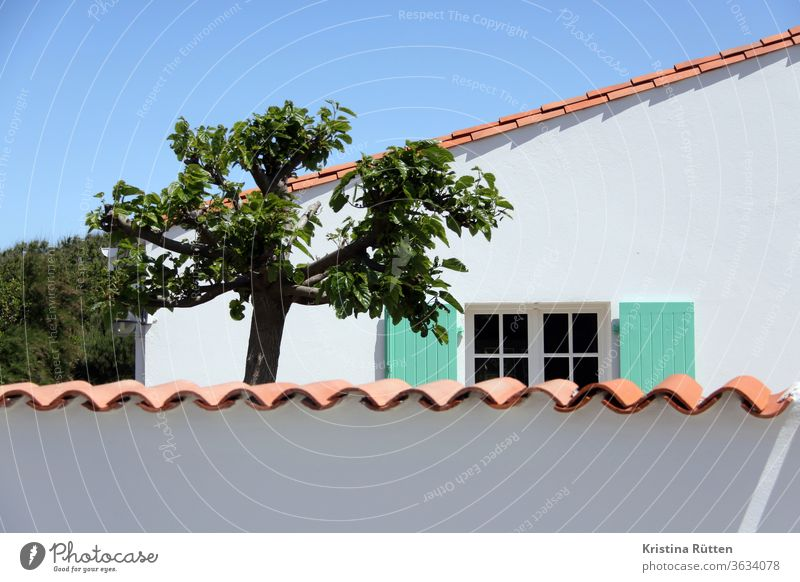 holiday home with privacy Wall (barrier) House (Residential Structure) Window tree Garden Private Roofing tile shutters Screening wind deflector garden wall