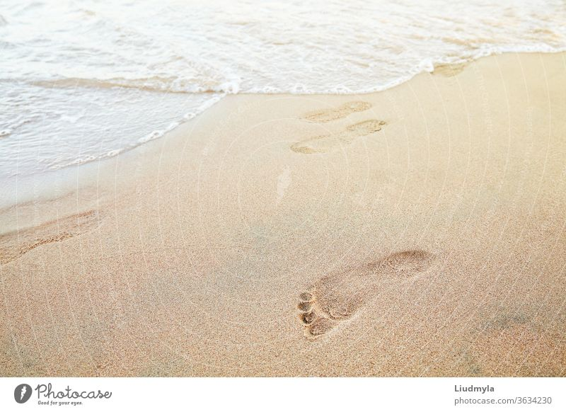 Foot prints on the beach of a seashore near the sea alone aqua background barefoot bay calm coast coastline destination explore flow footprint footprints