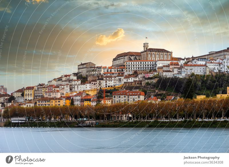 Coimbra cityscape by sunset, Portugal coimbra portugal river architecture downtown street house green garden nature unesco world heritage summer skyline