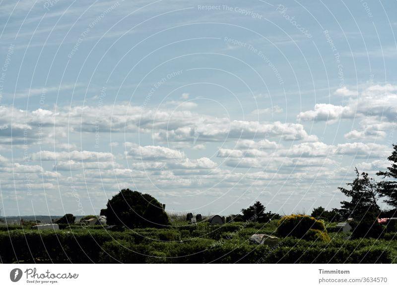 Friendly sky over Danish cemetery Sky Clouds Beautiful weather Cemetery gravestones plants Hedge trees Denmark