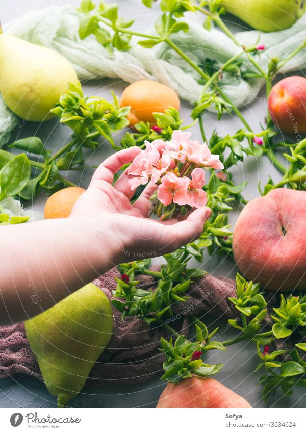 Fresh summer fruit concept still life harvest pattern nature natural organic peach pear fresh freshness girl hand hold keep give take pick saturn flower plant