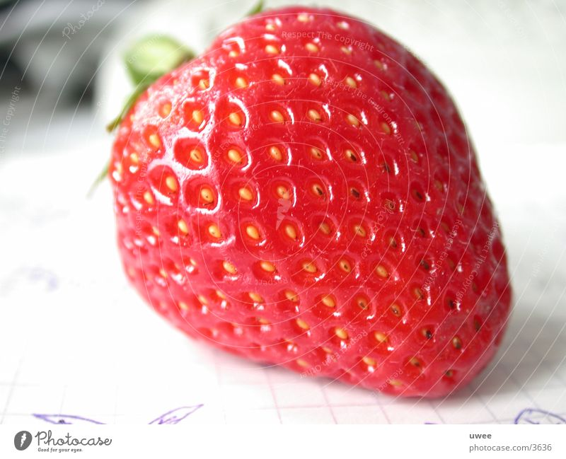 strawberry Red Fresh Summer Plant Healthy Detail Fruit Nutrition Vegetarian diet Strawberry Berries