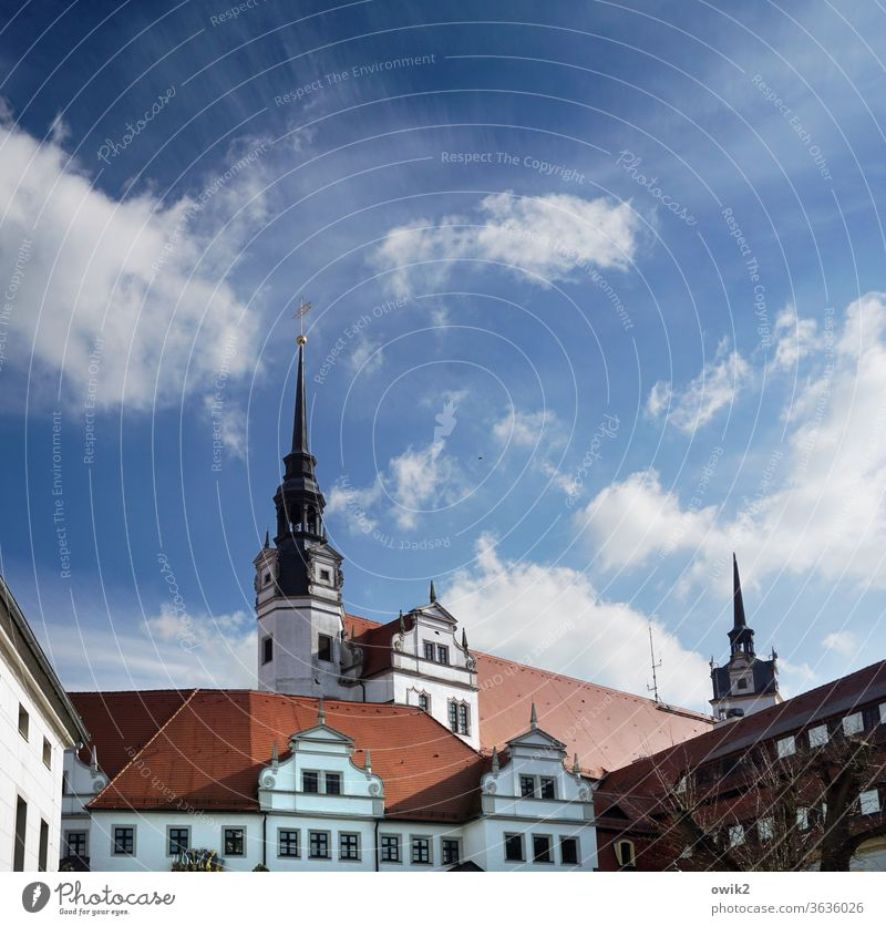 Torgau where it is highest torgau Saxony Germany Small Town Downtown built Wall (barrier) Wall (building) Window Roof Colour photo Exterior shot Detail Deserted