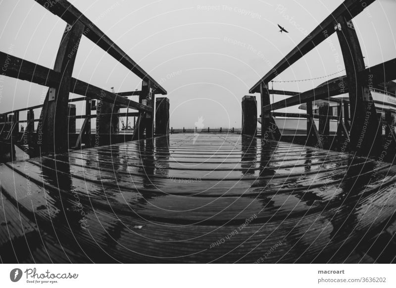 pier Sea bridge investor jetty wood Wet Rain rainy Gray birds Flying Wide angle fisheye vacation Baltic Sea rusty wooden Wooden boards