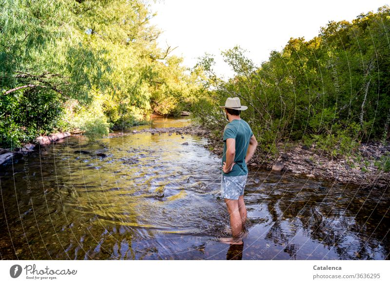Young man with straw hat and swimming trunks stands at a shallow spot in the stream. Lush vegetation grows on the banks of the stream Nature Plant flora bushes