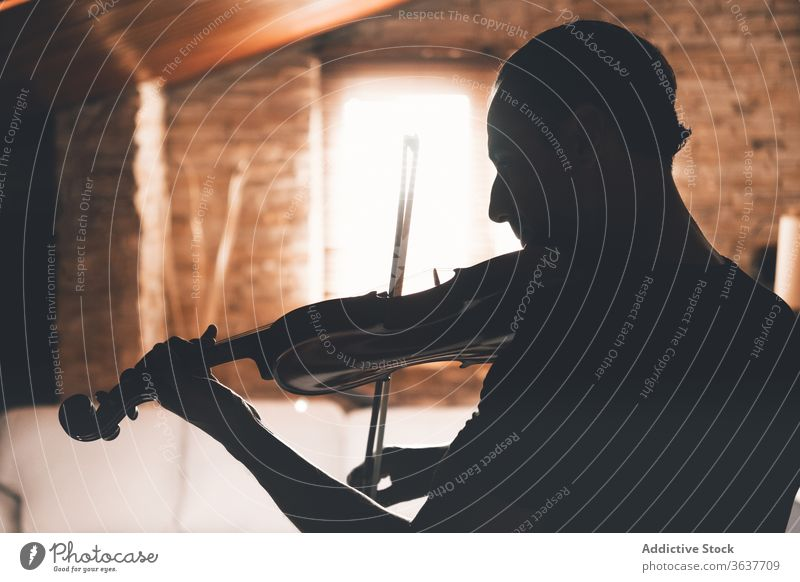 Male violinist playing melody at home musician man silhouette perform instrument male practice talent art music sheet tune song hobby entertain rhythm player