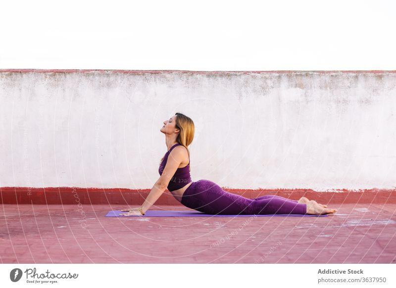 Concentrated woman doing yoga in Cobra pose flexible practice mat Vajrasana cobra pose wellness concentrate female terrace leggings body harmony slim healthy