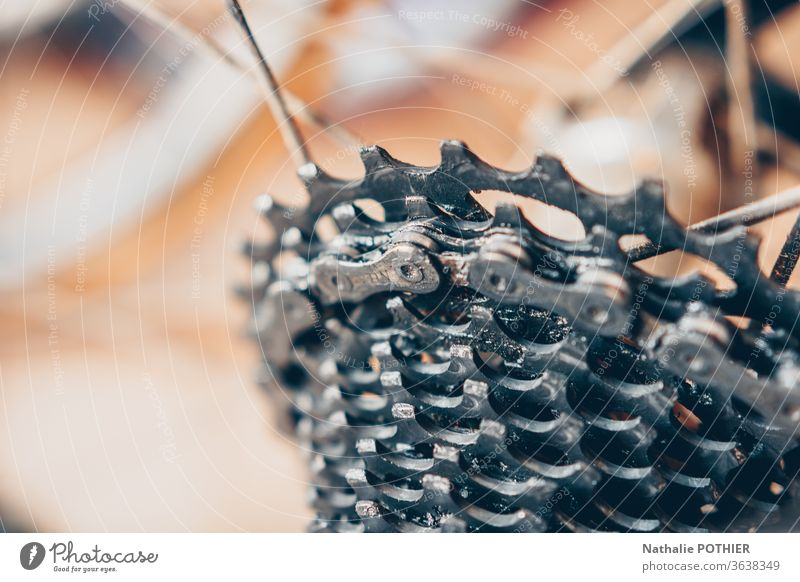 Bicycle derailleur bic notched plateau race cycling cyclist Cycling Cycling tour Sports Leisure and hobbies Colour photo Close-up Metal Wheel Chain