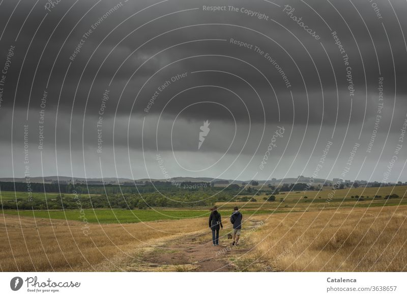 Walk in rainy weather young couple Couple Together Bad weather stroll Earth path fields Clouds Fields nature Grass Willow tree Plant Horizon huts hillock off