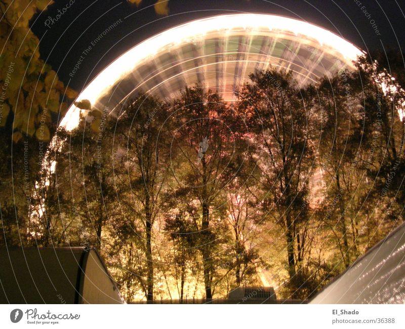 Tree Dark Movement Leisure and hobbies Rotation Ferris wheel