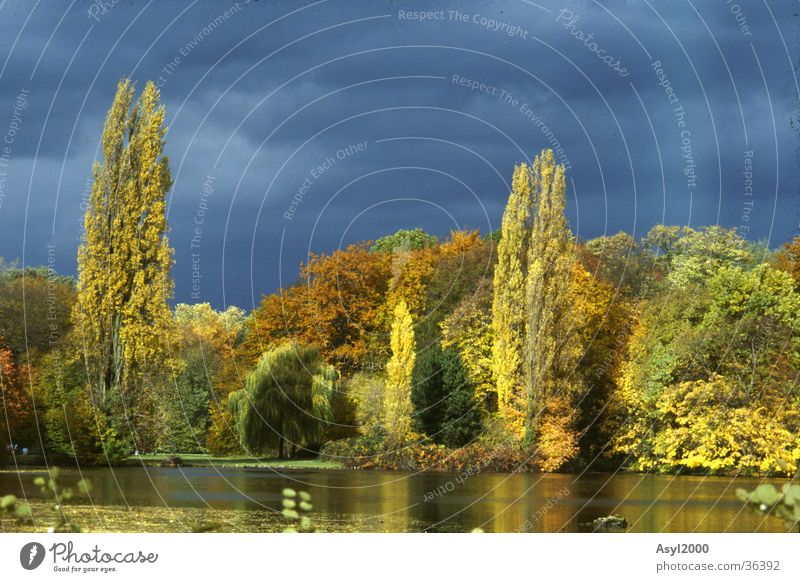forgotten LAnd(i) Autumn Lake Yellow Dark Clouds Colour