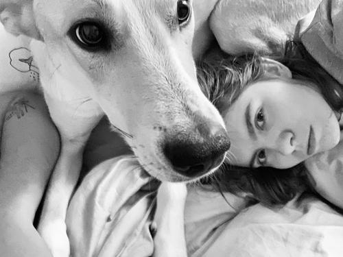Family selfie in the morning at the bed with a beloved dog Girl Woman Portrait photograph Dog Pet Selfie Morning Bed in bed Black & white photo bw