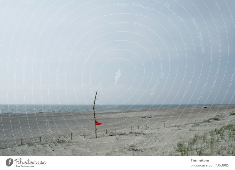 Red in the wind. Vacation & Travel Environment Nature Sand Water Sky Beach North Sea Denmark Flag Blue Green Wind Judder Stick Flags at half mast Colour photo