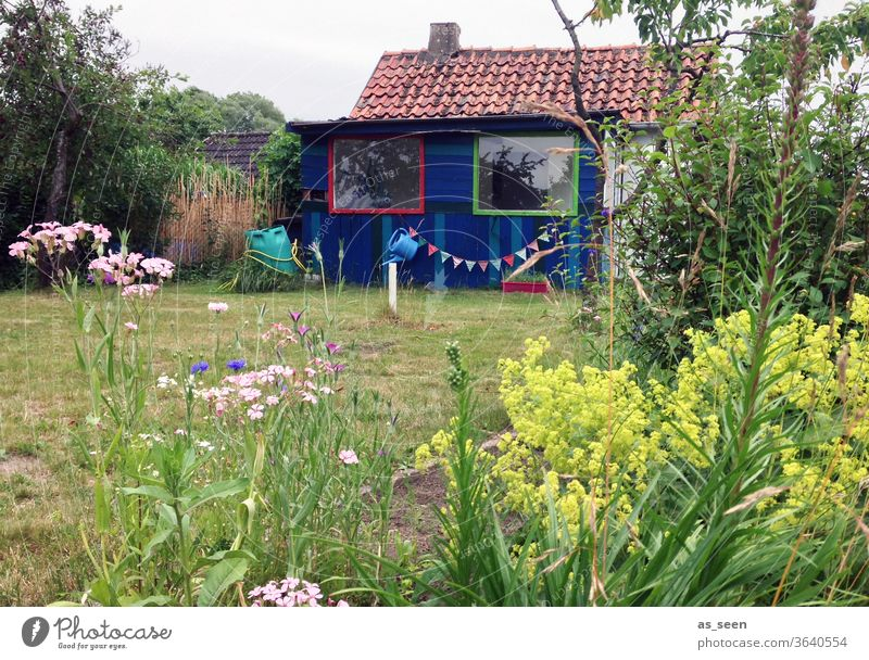 summer house in summer Gardenhouse Gardening Paper chain flowers Meadow Garden plot plants Watering can Window Arbour Summer Nature Exterior shot Colour photo