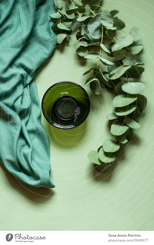 Green-Green-Green green Colour Cloth bowls Curtain Plant flatlay Design Decoration