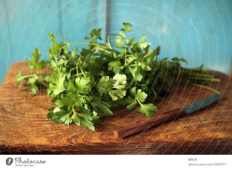 parsley Food Herbs and spices Nutrition Organic produce Vegetarian diet Knives Kitchen Fresh Healthy Blue Green To enjoy Parsley Aromatic Kitchen Table