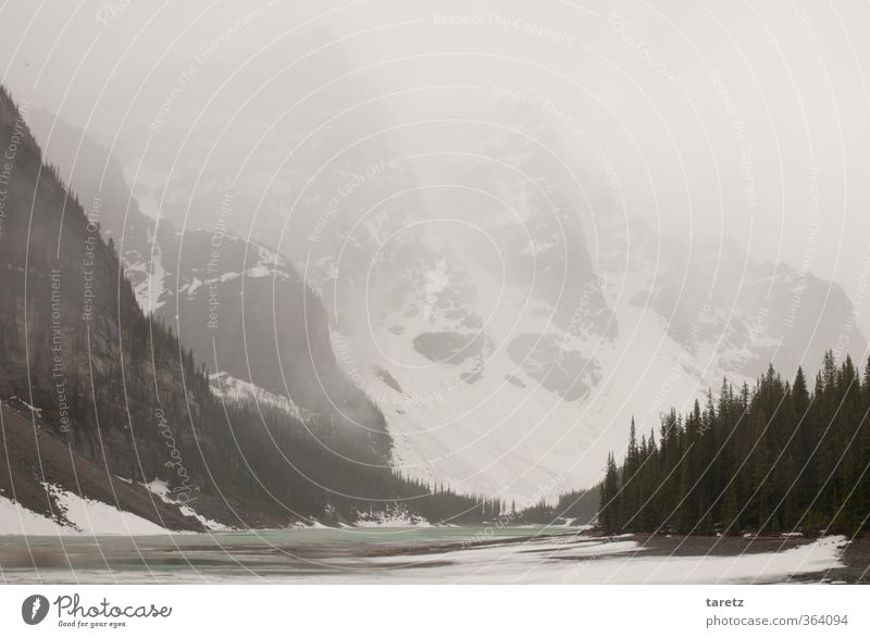 Grey summer day Landscape Mountain Rocky Mountains Lake Moraine lake Exceptional Far-off places Cold Gray Haze Glacier Fog Nature Mountain lake Discover