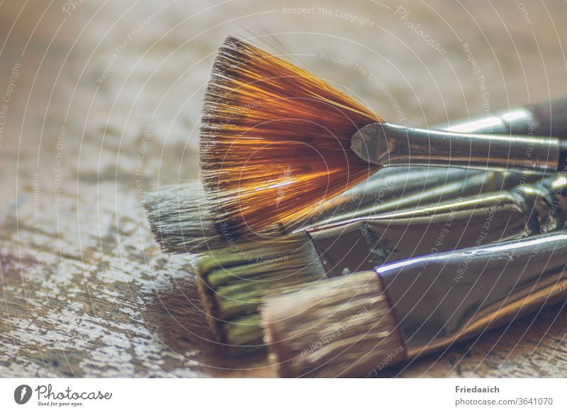 Brushes ready for the painting lesson Paintbrush Acrylic brush Art Multicoloured Leisure and hobbies Creativity Painting (action, artwork) Close-up