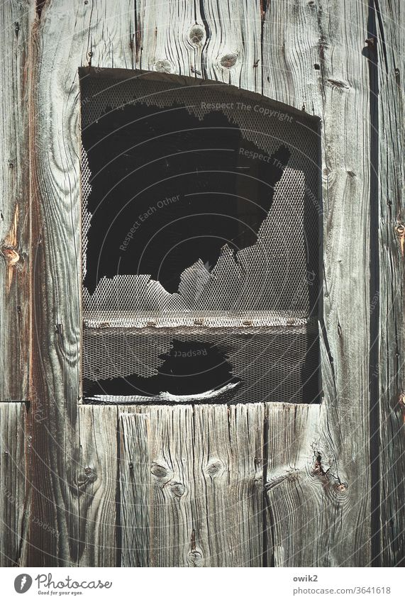ChessMATT Window Grating Old Bizarre conceit Detail shattered remnants Decline Transience Facade Destruction Exterior shot defective Broken Deserted