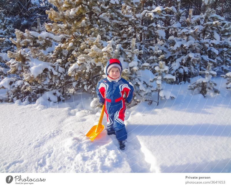 Happy little boy in winter near a snowy Christmas tree happy christmas tree child plays outdoor childhood clothes cold cute december forest fun happiness