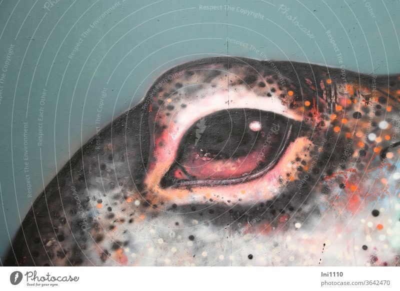 View into a colourful spotted graffiti eye of an octopus on a neutral wall| UT Hamburg Decoration mural painting Graffiti Spray Gray pink Pink Wall (building)