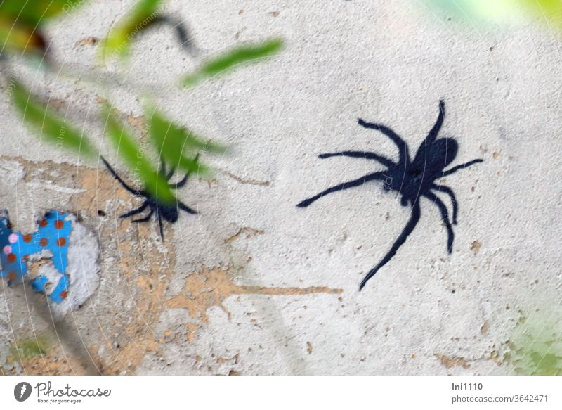 black spiders discovered through leaves on flaked partly colored masonry| UT Hamburg Decoration mural painting Graffiti Spray Gray Wall (building)
