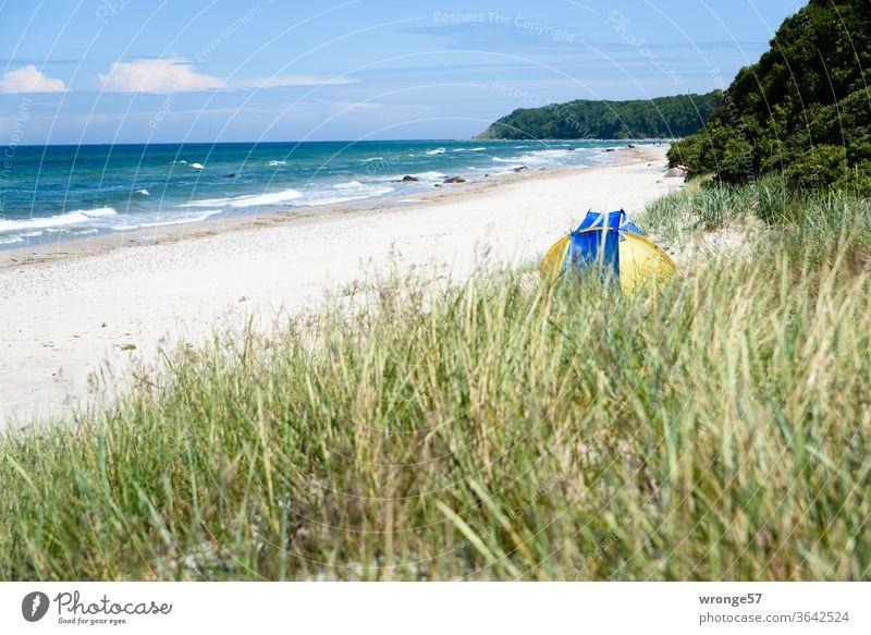 Off to the weekend | dunes, beach, blue sky and sea Baltic beach Baltic Sea Ocean Blue sky Beautiful weather Sandy beach Marram grass beach shell Deserted Beach