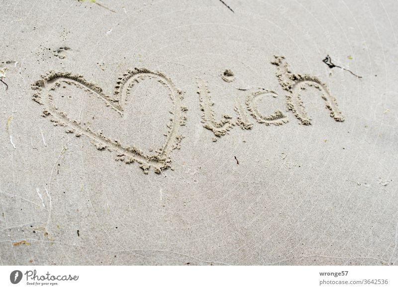 Heart, heart and writing written in the wet Baltic Sea beach Sincere Sand Beach Sandy beach authored Love Ocean Exterior shot Colour photo Coast Day Summer