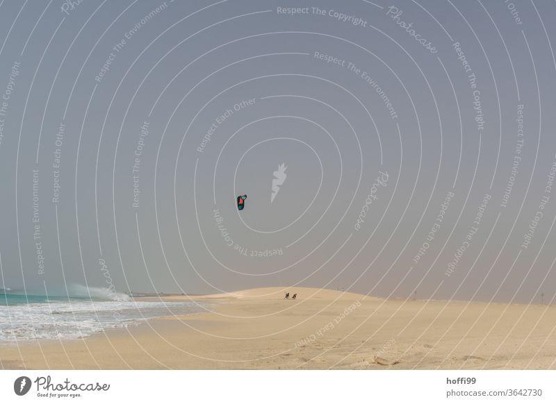 after the sport - kitesurfers go home stage Desert Waves Swell Atlantic Ocean ocean wide Water Coast Sports Minimalistic minimalism Haze Sandy beach Sandstorm