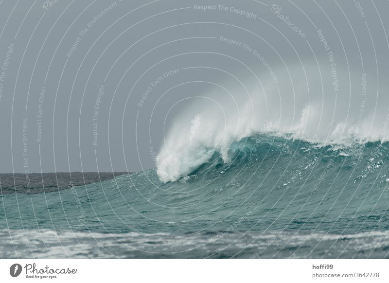 a big wave breaks in a storm - the spray blows away Swell Waves White crest Foam Ocean Water turquoise Surf Wild Gigantic Nature Coast Elements Energy