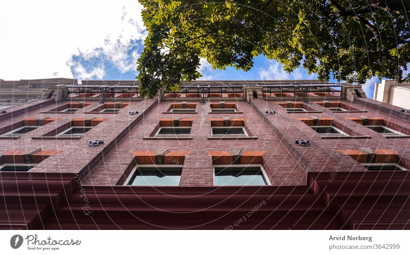 Looking up on a brick building with a tree pointing out and the blue sky in the background angle architecture buildings business city cityscape clouds