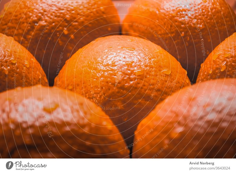 Close up of several oranges with water droplets background bright citrus closeup color food fresh freshness fruit fruits green healthy isolated juice juicy
