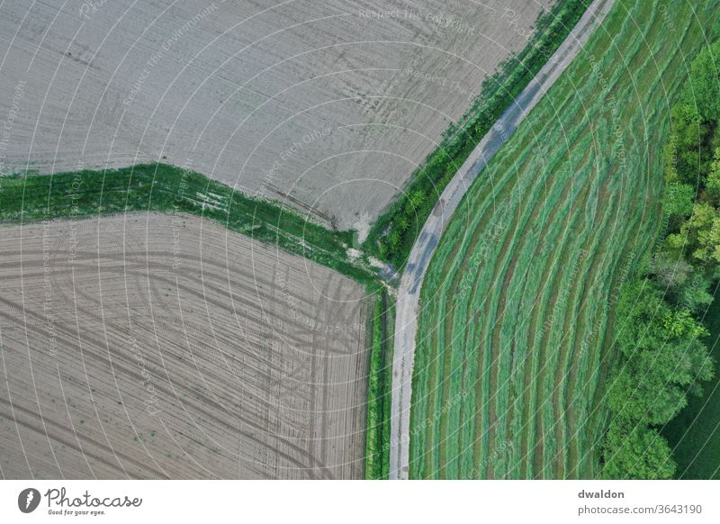 Agriculture from Above drone Field farming Farm green brown agriculture field nature rural agricultural landscape Nature countryside plant summer harvest crop