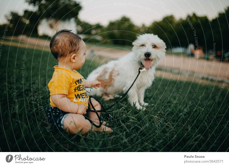 Baby and dog at park Together togetherness Pet Dog Friendship friends lifestyle caucasian love beautiful young pet smiling cute happy friendship Park Garden